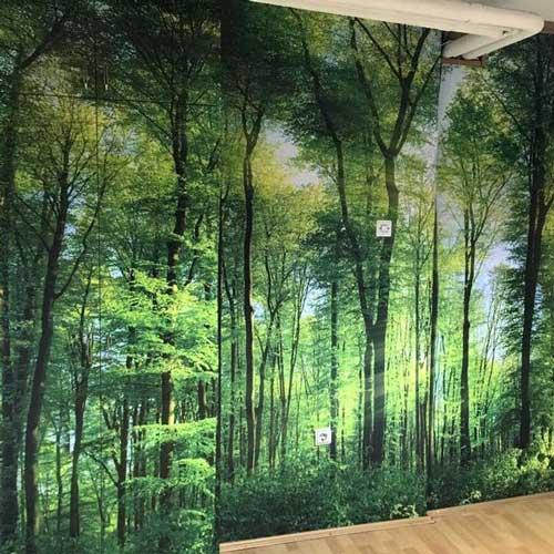 Ideje za foto tapete kancelarijski zid šuma