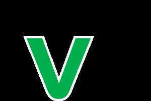 DV Mobile logo